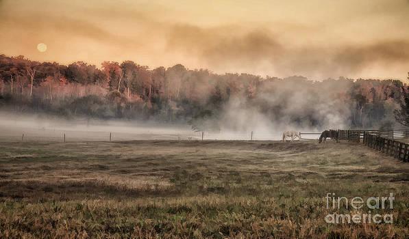 Early Morning Fog by Linda Blair
