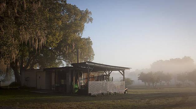 Lynn Palmer - Early morning on the Farm