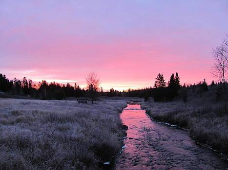 Early November Sunrise by Sandra Martin