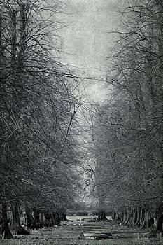 Svetlana Sewell - Early Spring