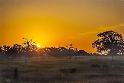 Barry Jones - Sunrise - Texas - Early to Rise