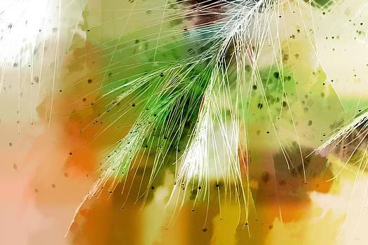 Holly Kempe - Earth Silk