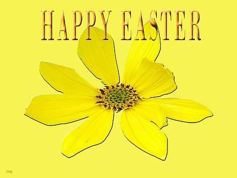 Easter 55 by Patrick J Murphy