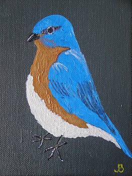 Eastern Bluebird by Jeannette Brown