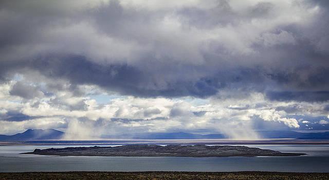 Eastern Sierra Nevada High Desert Mono Lake by Lisa Anne McKee