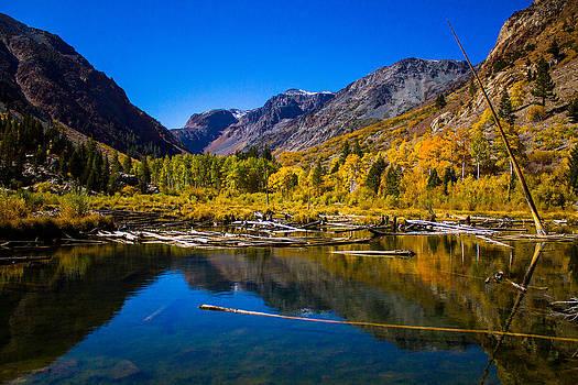 Eastern Sierra Nevada Lundy Canyon by Lisa Anne McKee