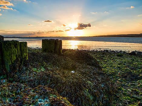Ebb tide at sunset by Trevor Wintle