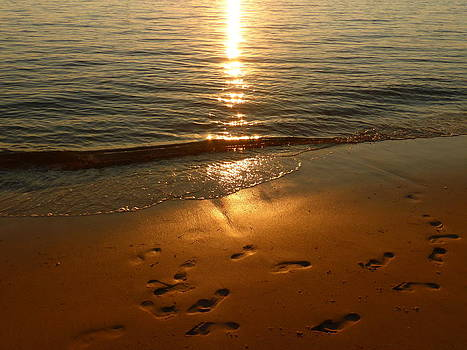 Footprints in the Sand by Bishopston Fine Art