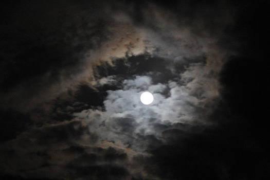 Eclipse by Cigdem Cigdem