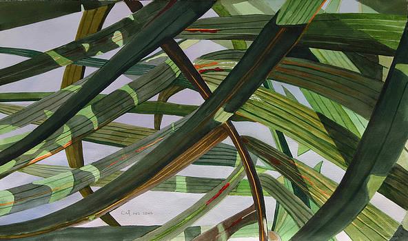 Eco 2 by Cathy Ehrler