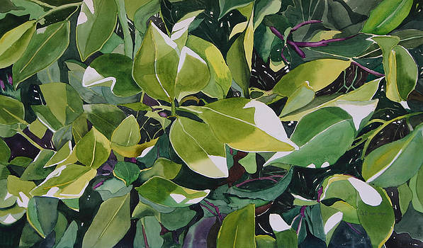 Eco 6 by Cathy Ehrler