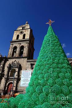James Brunker - Ecological Christmas Tree