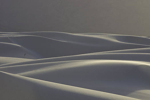 Edge of Night by Judi Baker