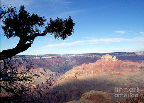 Edge of Wonderment by Janice Sakry
