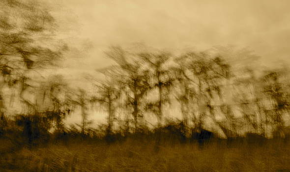 Edges Blurred by Bruce Smith