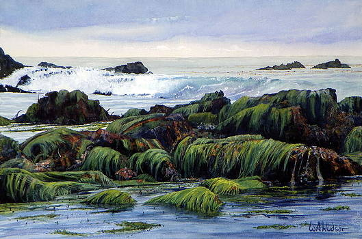 Eelgrass at Low Tide by Bill Hudson