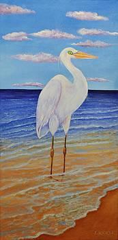 Egret On The Beach by Jane Ricker