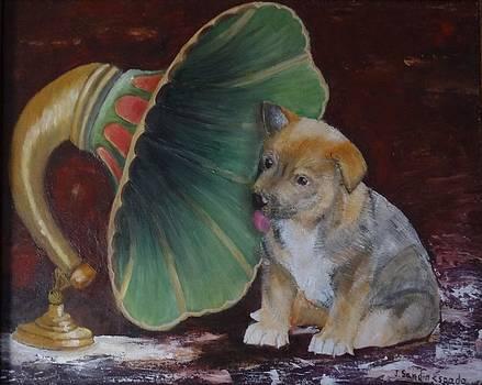El cachorro y la musica by Juan Sandin