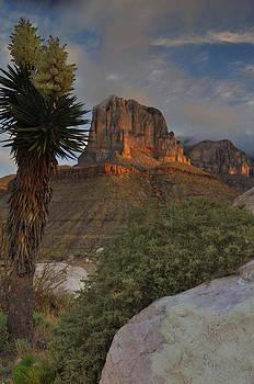 El Capitan At Sunrise by Stephen  Vecchiotti