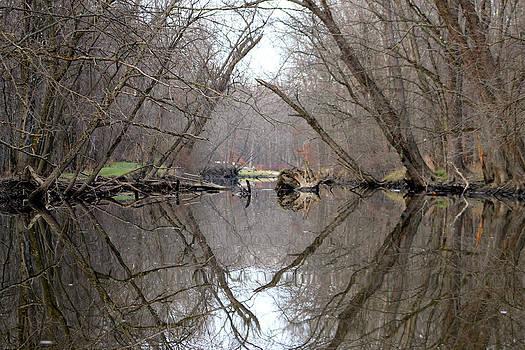 Eldon's Reflection by Bruce Patrick Smith