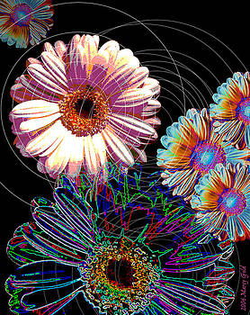 Electric Daisies by Marcy Gold