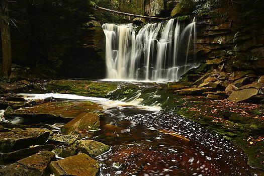 Elekala Falls by Terry Everson