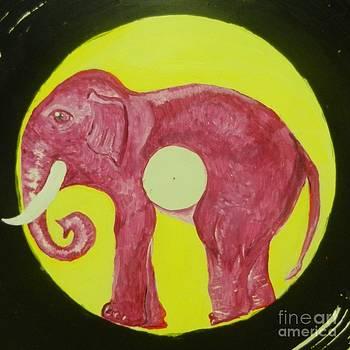 Elephant Cd by Juan Molina