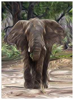 Elephant by Ck Gandhi
