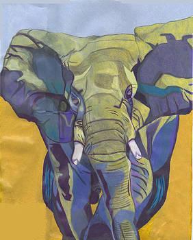 Elephant by Joshua Holmes
