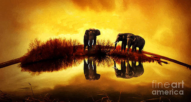 Elephant on Top by Larry Stolle