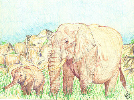 Elephants by Donald Jones