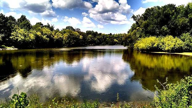 Elk Creek Tennessee by Chris Tarpening