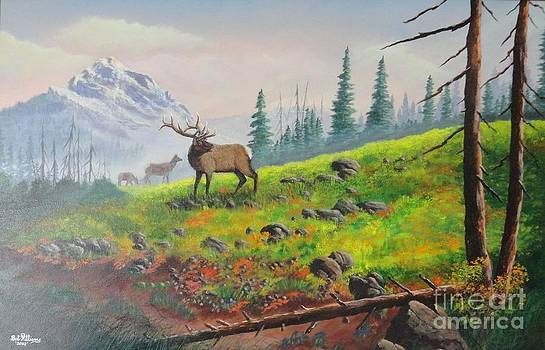 Elk in the Mist by Bob Williams