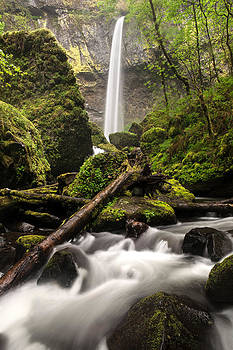 Elowah Falls by David  Forster