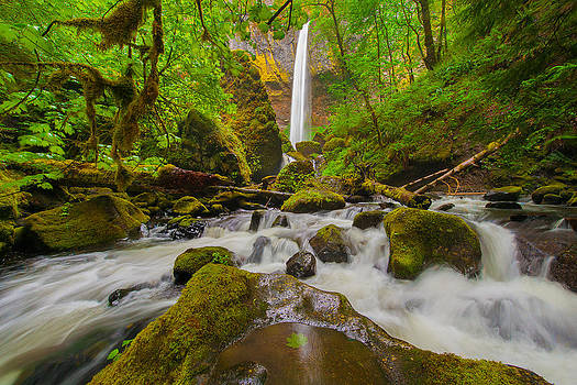 Elowah Falls by Joseph Rossbach