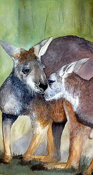 Embrace by Kangaroos by Jan Lowe