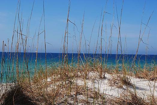 Emerald Coast Beaches by Michele Kaiser