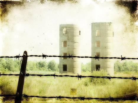 Gothicolors Donna Snyder - Empty Silos