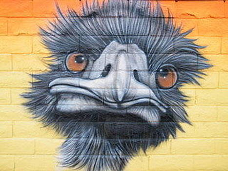Emu by Christopher Fresquez