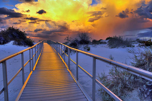Enchanted Boardwalk by Eric John Galleries