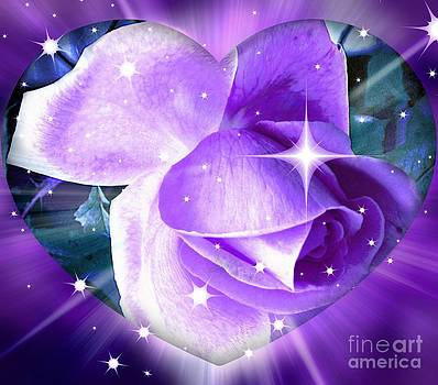 Enchanted Rose by Judy Palkimas