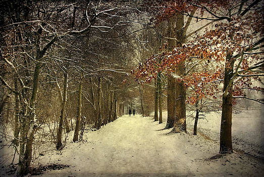 Enchanting Dutch Winter Landscape by Annie Snel