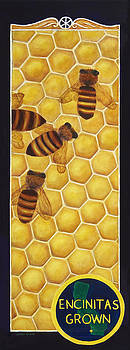 Encinitas Grown - the Bee banner by Jennifer Richards