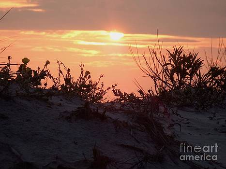 End Of The Day by Chad Thompson