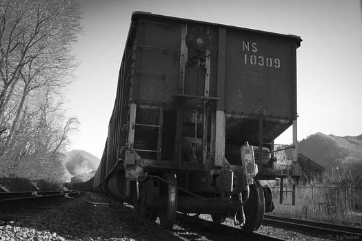 End View of a Train by Teresa Wissen