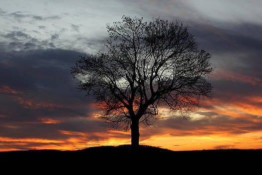 Enduring Peace by Everett Houser