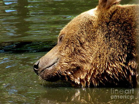 Cooling Off by Jaunine Roberts