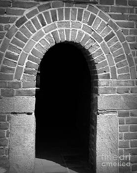 Enter by Shawna Gibson