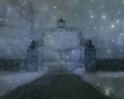 Gothicolors Donna Snyder - Entrance To A Dream