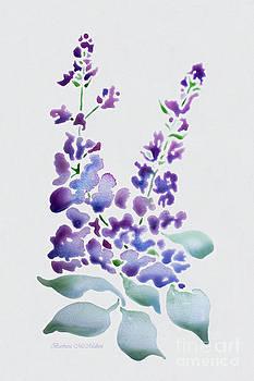 Barbara McMahon - Essence of Lilac